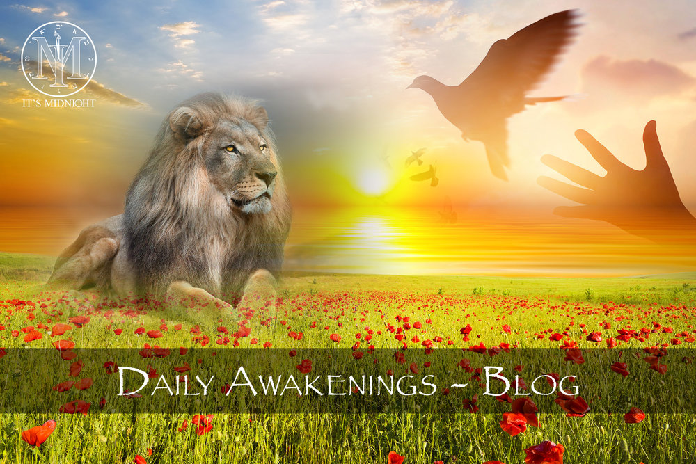 Daily Awakenings Blog Thumbnail.jpg