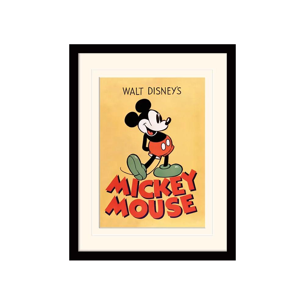 mickey mouse print.jpg