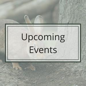 CASL Events Calendar