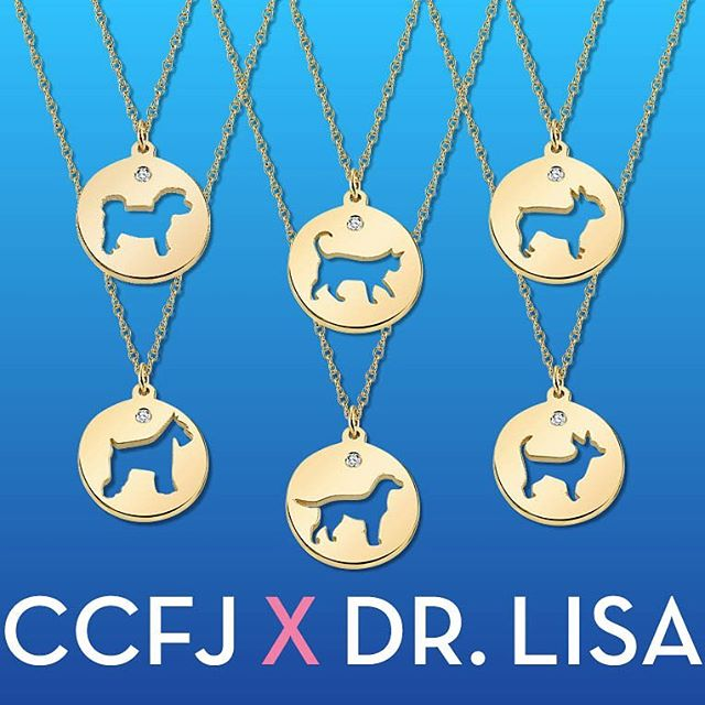 What better way to celebrate national dog day than to announce the launch of my collab with celebrity stylist @carriecramerjewelry : exquisite, hand crafted one of a kind necklaces that can also be customized.  The only socially acceptable way to keep your dog with you 24/7.  Link in bio to purchase.  h/t to @thedogagency for making this all happen!  Diamonds and dogs – better than peanut butter and chocolate............................................................................................................................#frenchie #frenchbulldog #frenchiesofinstagram #dog #dogs #dogsofinstagram #schnauzer #ridgeback #goldendoodle #goldenretriever #chihuahua #chihuahuasofinstagram #cats #catsofinstagram #saturdaycaturday #bichonfrise #bichon #bichonpoo #cute #jewelry #gifts #veterinarymedicine #vetmed #nationaldogday #nationaldogday