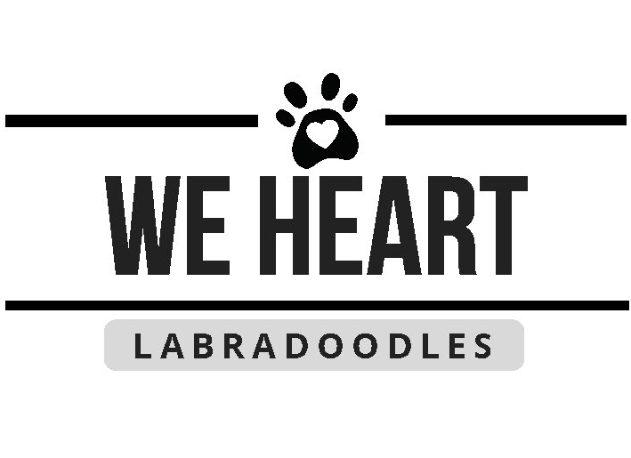 We Heart Labradoodles