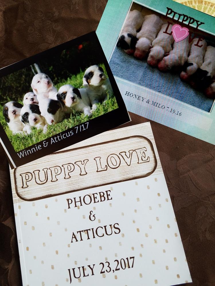 PHOTO BOOKS - 5 x 7 Soft Cover $25.00 plus S&H8 x 8 Hard Cover $35.00 Plus S&H8 x 11 Hard Cover $40.00 Plus S&H