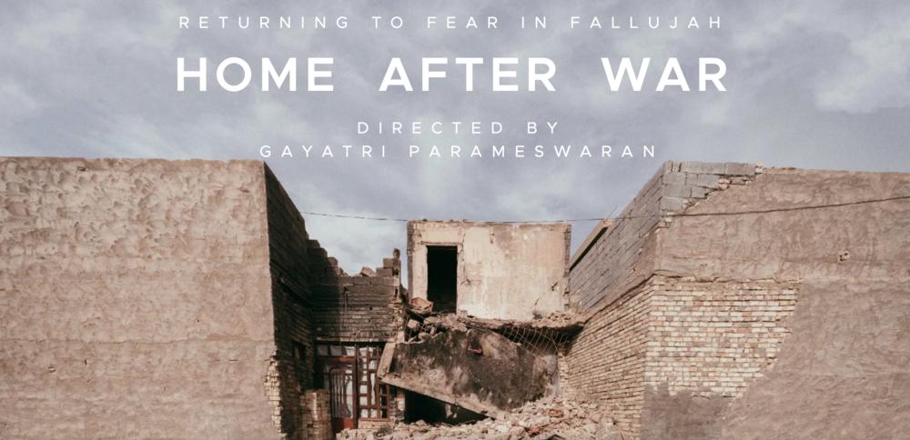 """Screenshot from the """"Home After War"""" website."""