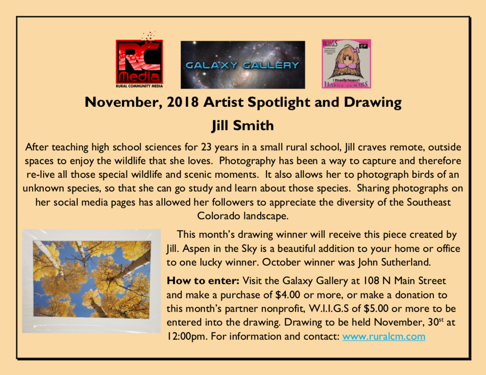 RCMCC Artist Spotlight Nov 18 - Jill Smith.png