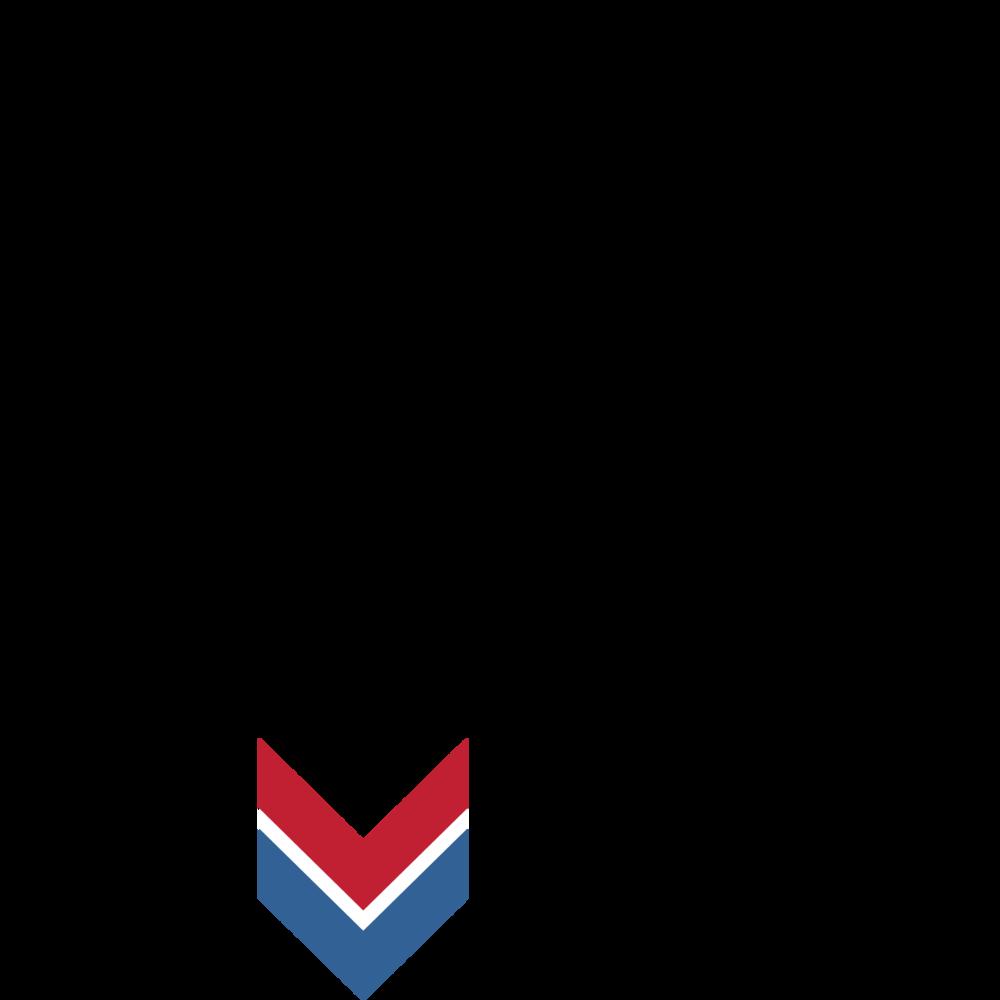 MVP square logo.png