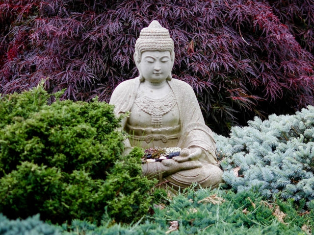 insight meditation society -
