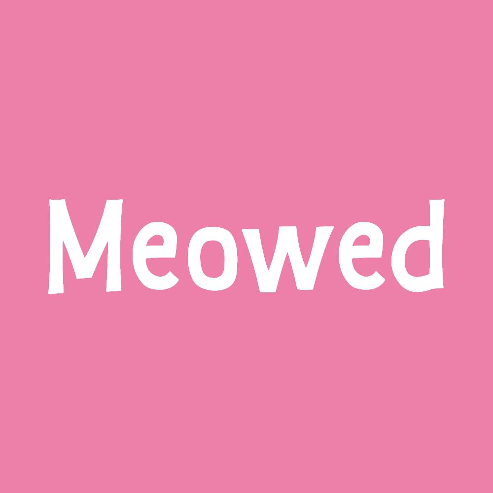 Meowed - Best cat community on instagram
