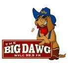 BigDawn Logo_resized.jpg