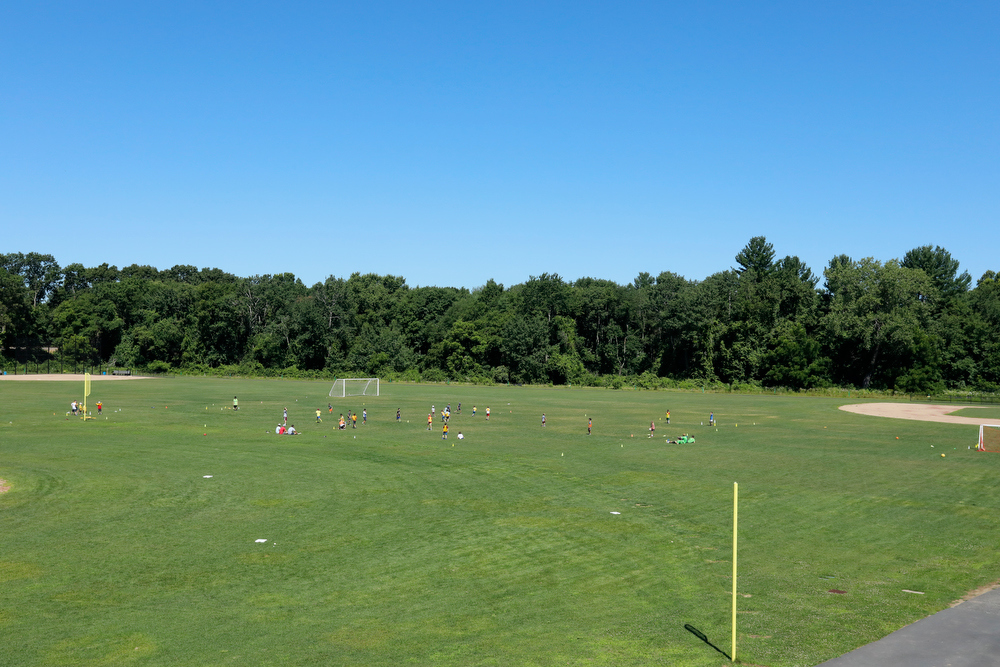 Expansive grass fields for soccer, multi-sport and lacrosse