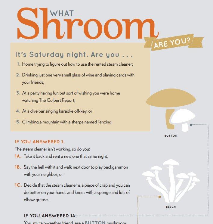 shroom-promo.jpeg