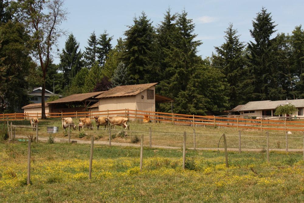 kurtwood-farms-cookhouse.jpeg