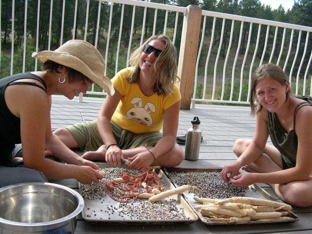 qfarm-corn-girls-2009.jpeg