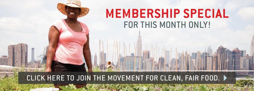 membership-25.jpg