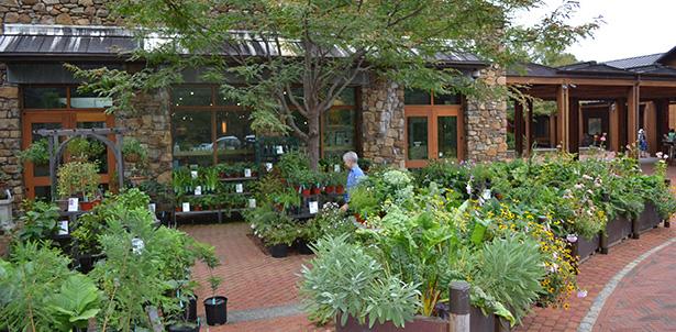 tjf-garden-shop.jpeg