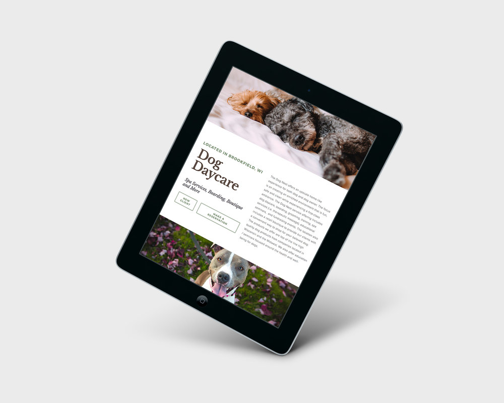 Golden-Antler-Graphic-Design-Milwaukee-Web-Branding-Marketing-Wisconsin-The-Dog-Nest-Website-Development-Squarespace-Budget