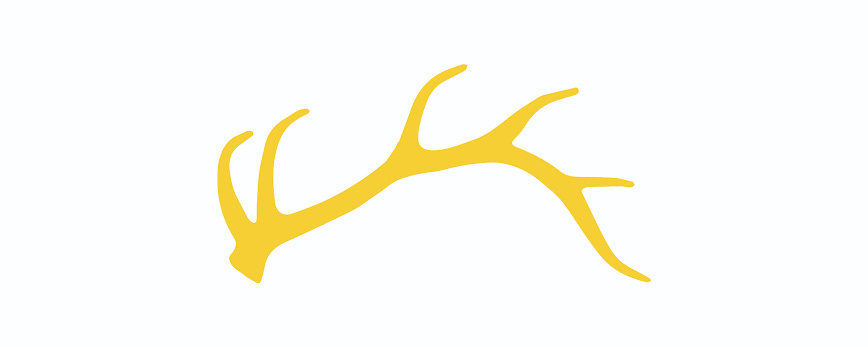 Golden-Antler-Design-Milwaukee-Web-Logo-Print-Branding-Graphic-Design-Creative-Services