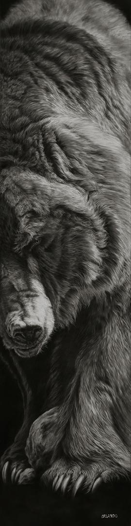 Orlando- Bear 48x12 copy.jpg