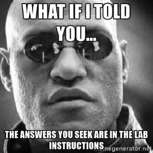 Morpheus meme on lab instructions 300 x 300px.jpg