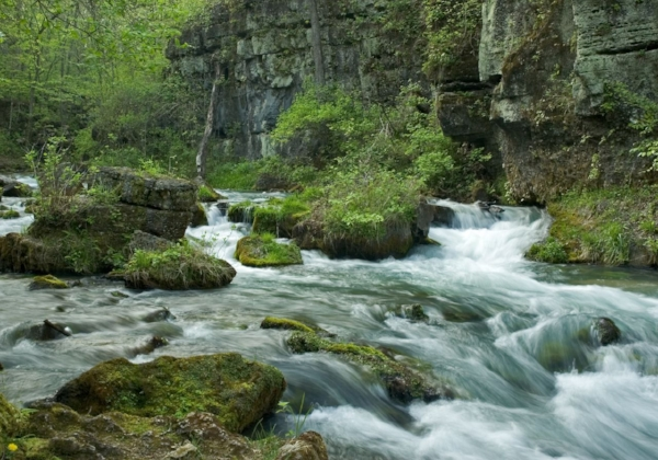Greer Spring. Photo: Allen Showalter/Images of Missouri Springs