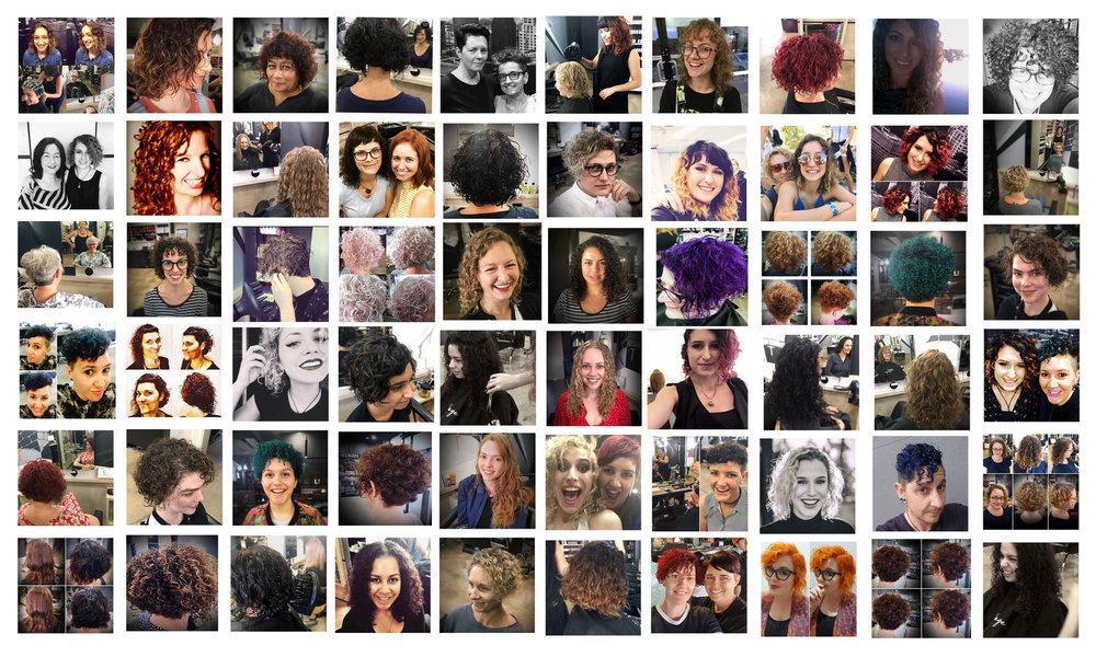 Curl+collage_WEB.jpg