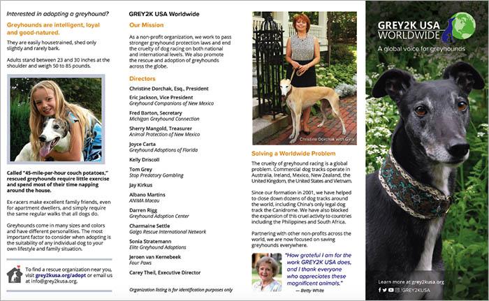 Brochure |  View as PDF