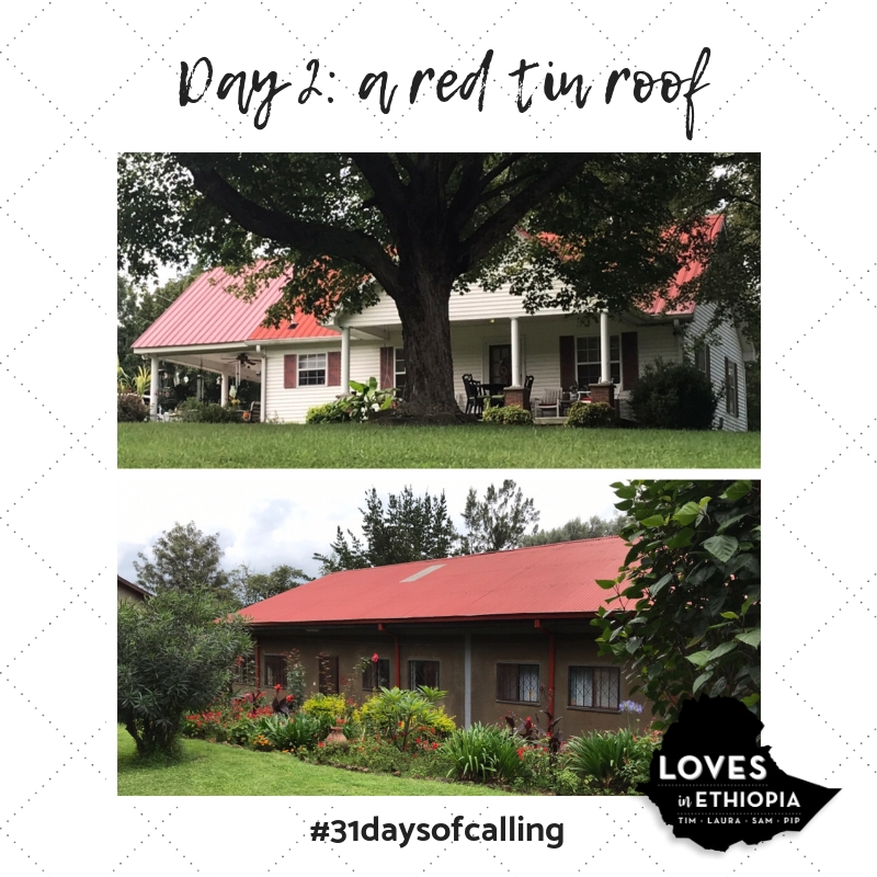 Day 2_ A Red Tin Roof.jpg