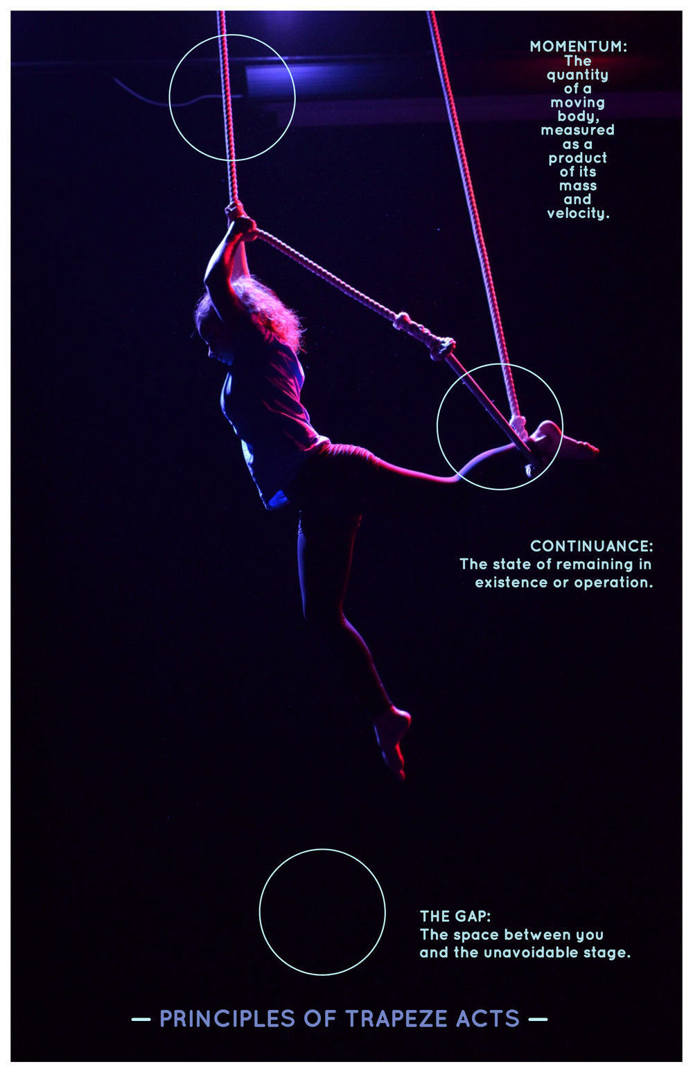 Principles of Trapeze Acts.jpg