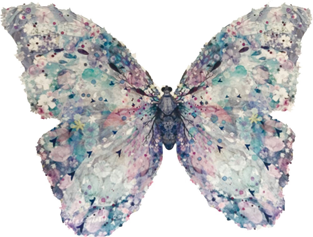 Le Papillon - bakery