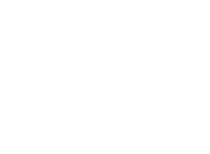 Alt-Logo-Type-W.png