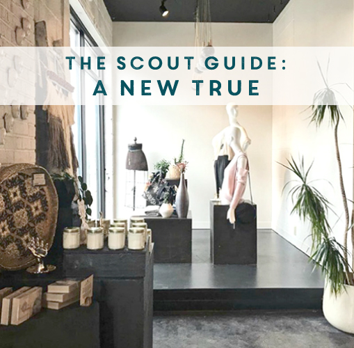 AS SEEN IN THE SCOUT GUIDE APRIL 2018