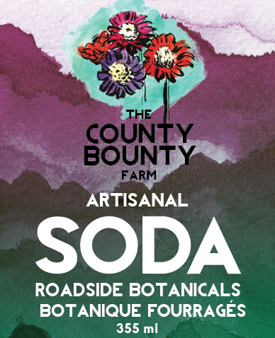 ROADSIDE BOTANICALS: A herbal soda made using foraged ingredients. Sumac hits your tongue with a slight tartness that mellows into a beautiful forest flavor.
