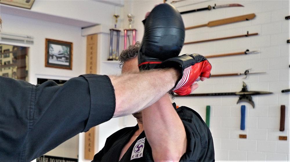 Mehr als Kämpfen - Lerne die richtigen Distanzen und eine schnelle Reaktion!Goshin Jutsu: Kampf und Verteidigung mit System
