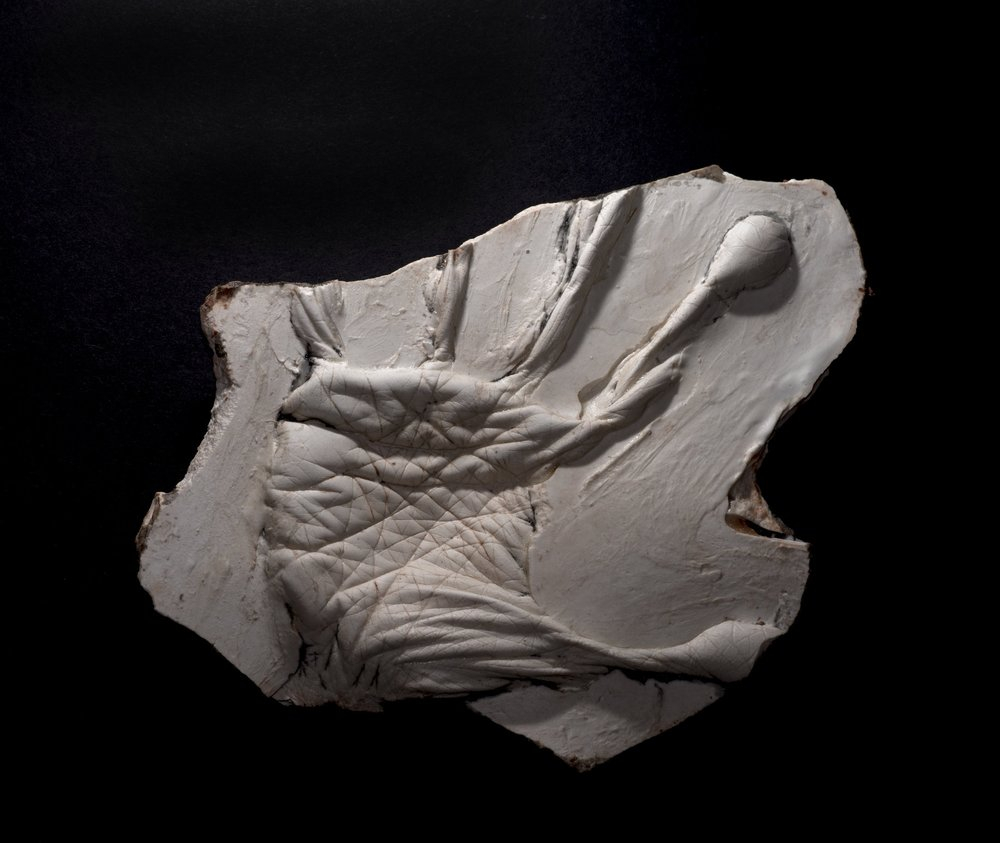 Wendy Richmond hand sculpture fossil