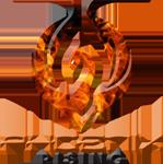 Phoenix rising.png