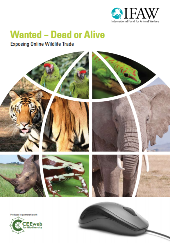 Wanted - Dead or Alive: Exposing Online Wildlife Trade