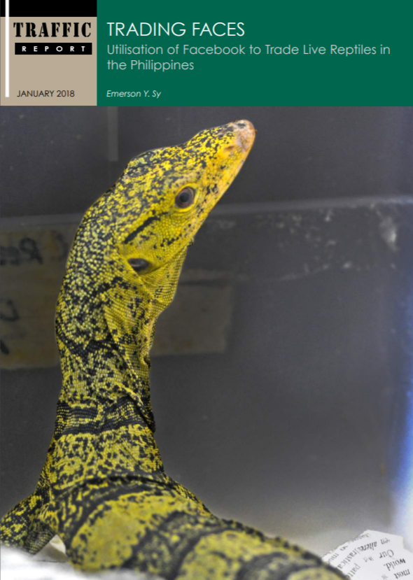 Trading Faces: Utilization of Facebook to Trade Live Reptiles in the Philippines