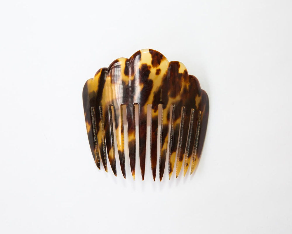 Tortoiseshell comb - Keith Arnold - WWFUS.jpg