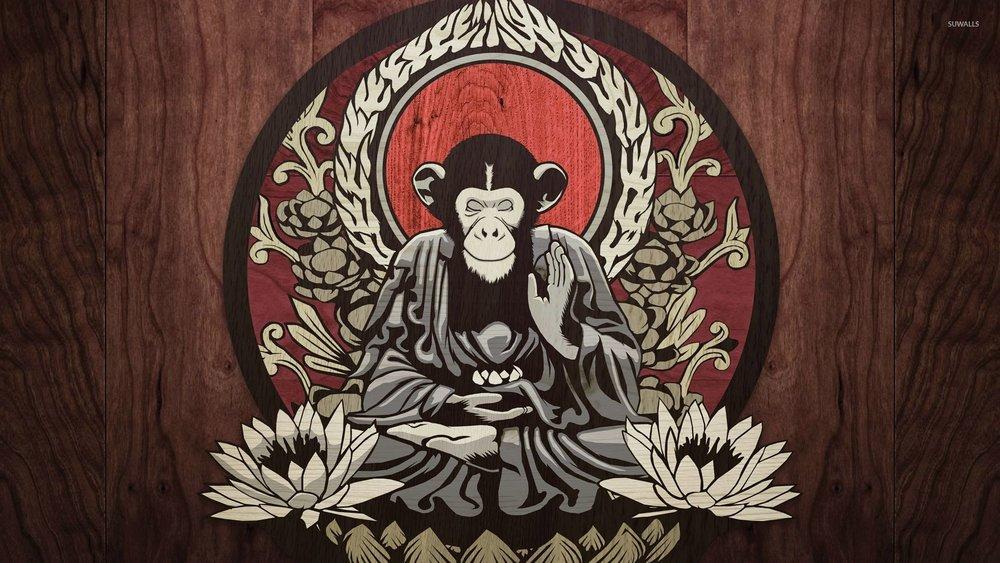 meditating-monkey-26689-1920x1080.jpeg