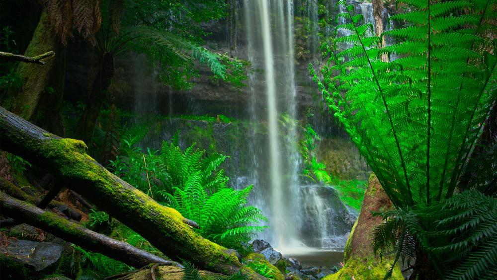 Tasmania03.png