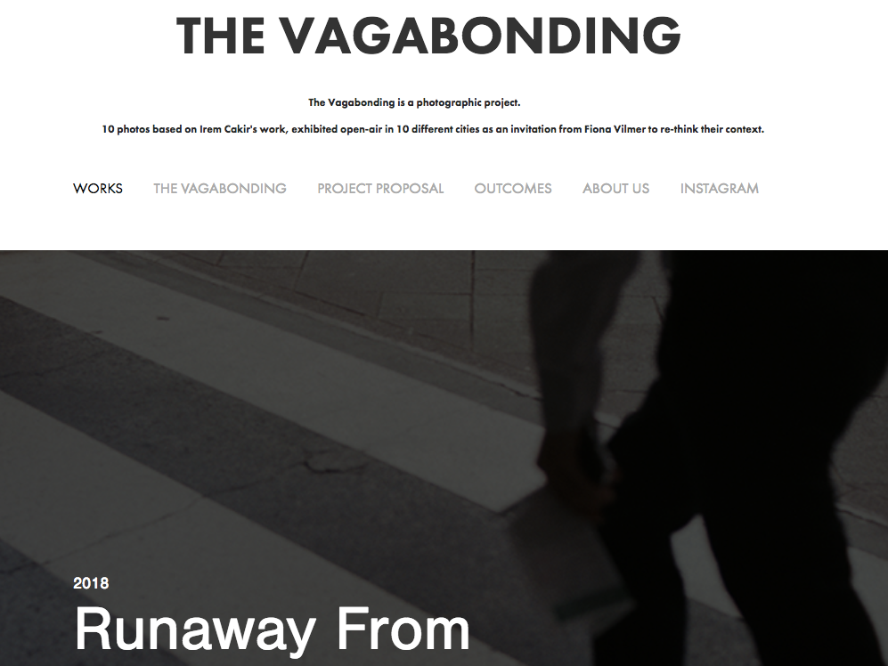 vagabondingwebsitescreen