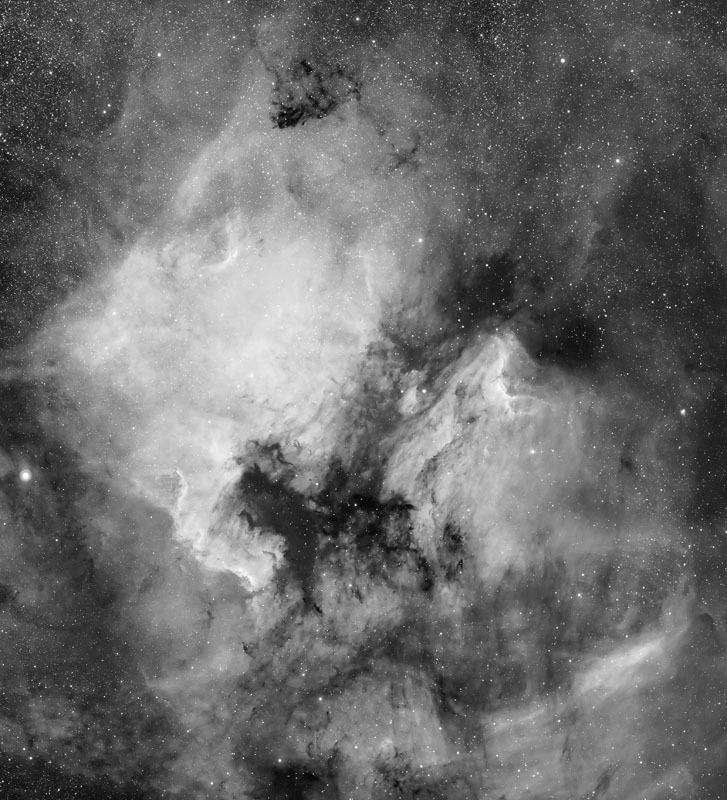 North America and Pelican Nebulae in Cygnus