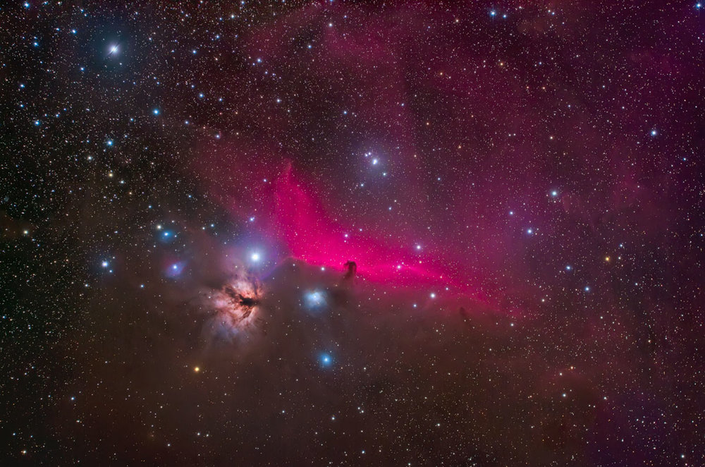 Horsehead Nebula from Winter Star Party 2010