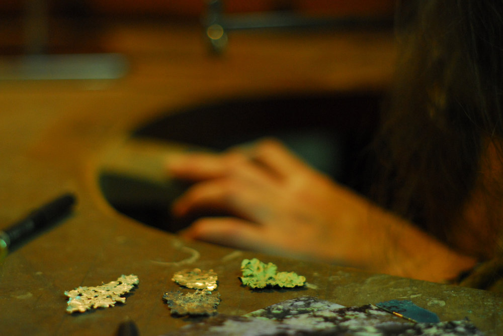 Lichen on the work bench. Image by Syd Buron