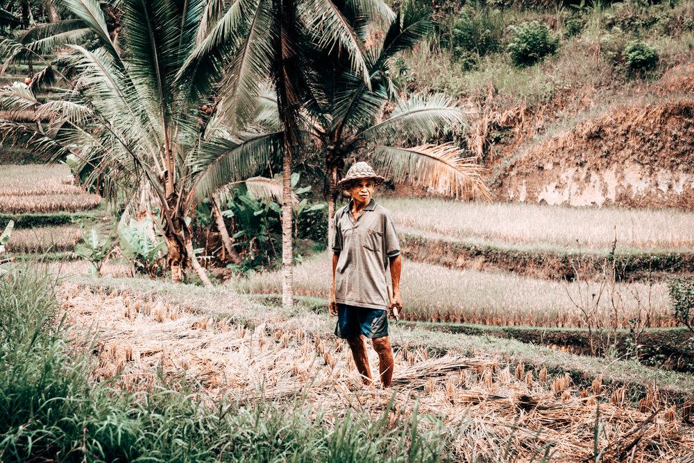 Indonesia Edited 2-04585.jpg