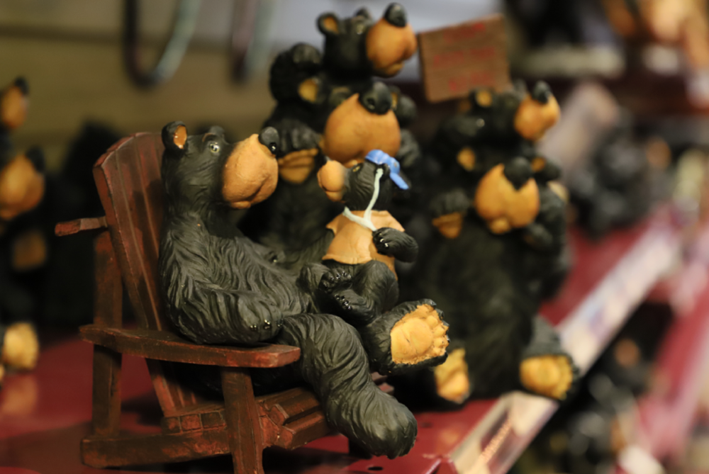 Bear Necessities - We've Got Those!