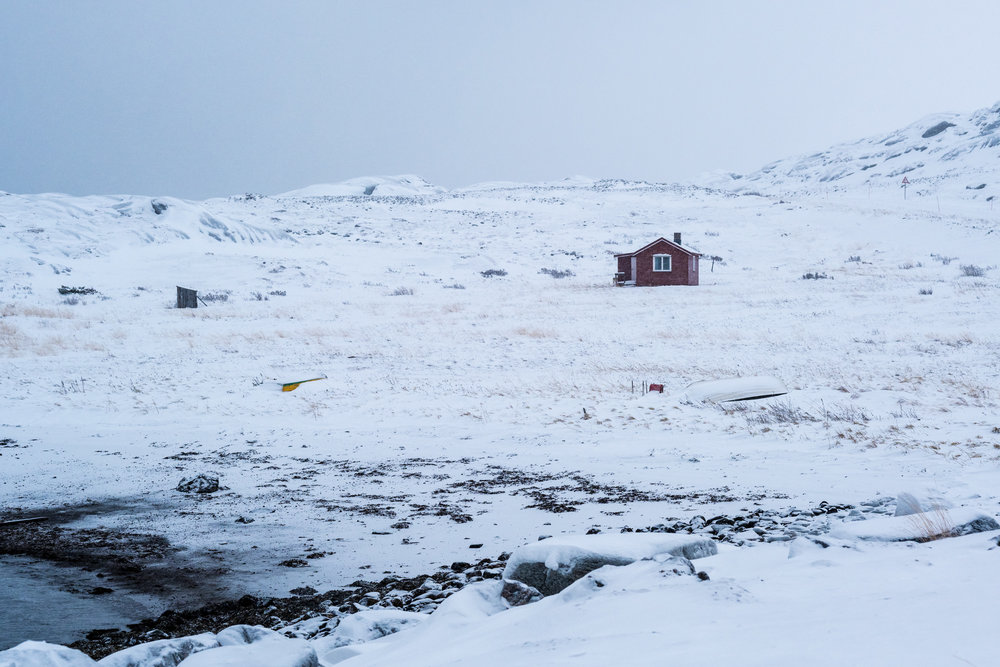 Cabin near Bugøynes / Fujifilm X-T3 ISO 400 56mm f/6.4 1/280sec