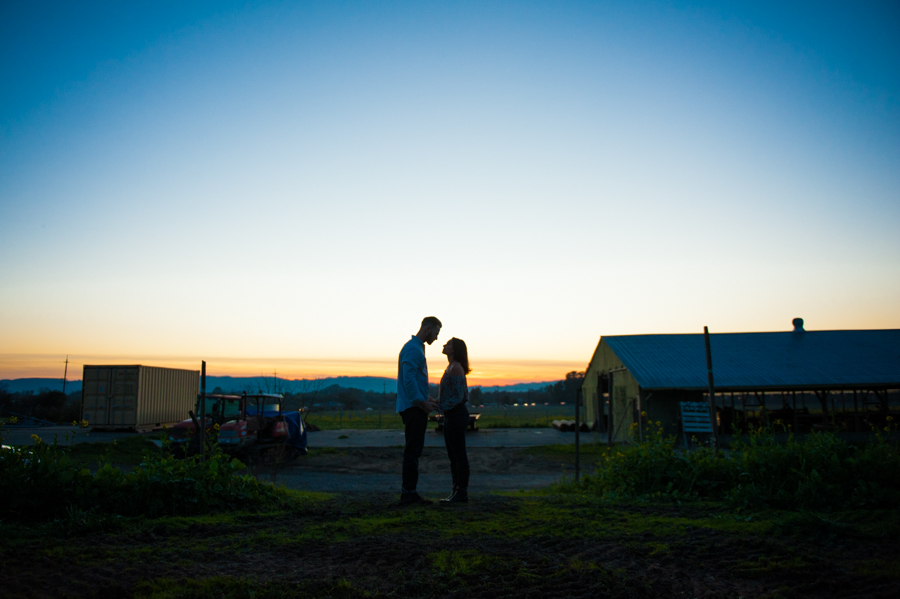 Kara Gwyn Photography Sonoma-Wine-Country-Engagement-Photography-28.jpg