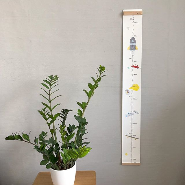 "From an Amazon buyer:""Got this as a gift for a friend's baby shower. She loved it and immediately hung on the wall"" #tadaroll easy on the eyes, perfect as a gift. . . . . #growthchart #pupupulakids #pupupula #kidsdecor #playroom #familyroom #moderndecor"