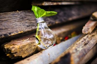consultoria sostenibilidad