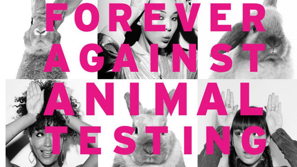 """""""Siempre en contra de testear en animales"""""""